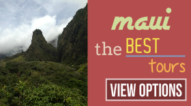 Maui daily deal discounts